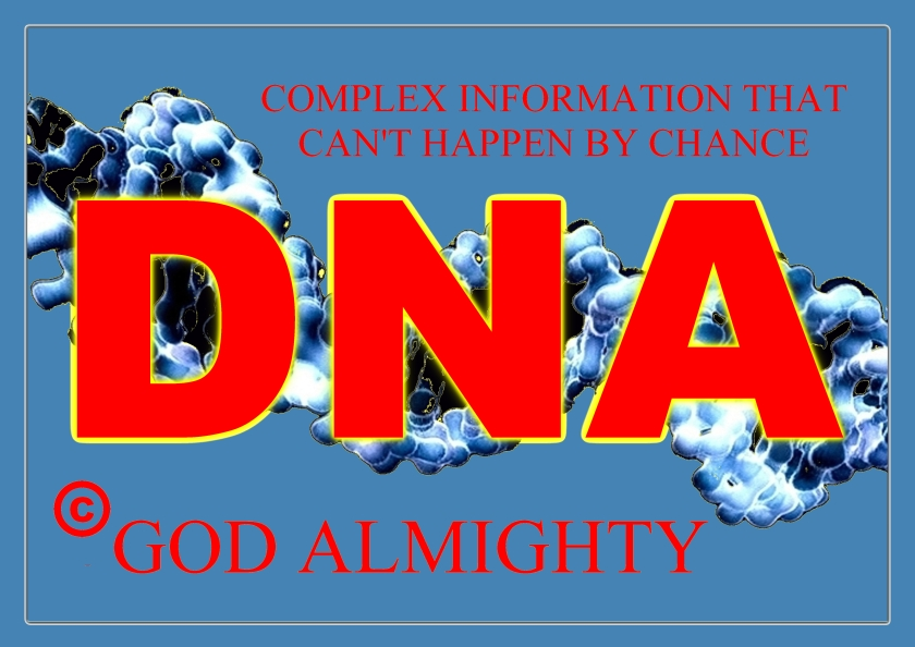 152a-dna-poster2