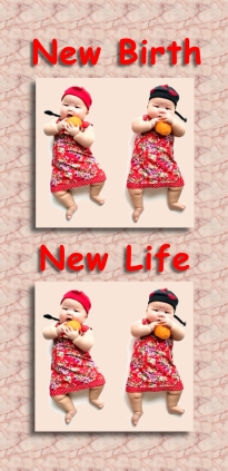 new-birth-new-life-chinese